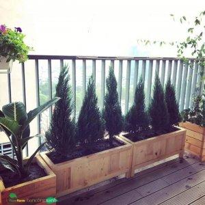 Chậu gỗ trồng cây cao cấp Fmifarm Edge Box EB933