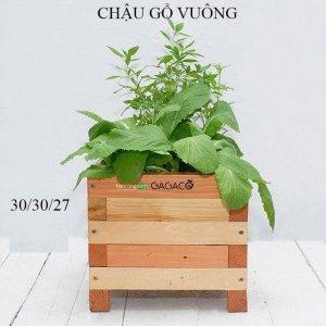 Chậu gỗ trồng cây-chậu gỗ trồng hoa cao cấp dạng vuông GG303027
