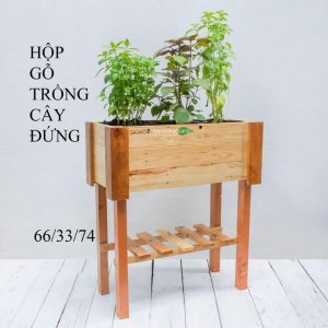 Hộp gỗ trồng cây dạng chân đứng cao GG663374