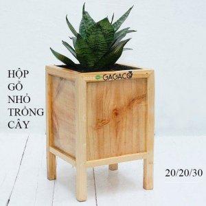 Hộp gỗ trồng cây miệng nối góc size nhỏ GG202030