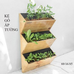 Kệ gỗ trồng rau 3 tầng áp tường GG642083