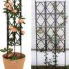 Khung trồng hoa hồng leo cao cấp DCDA031