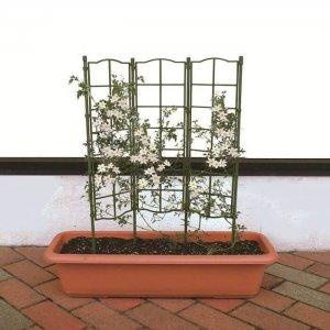 Khung trồng hoa leo cao 75cm loại ghép