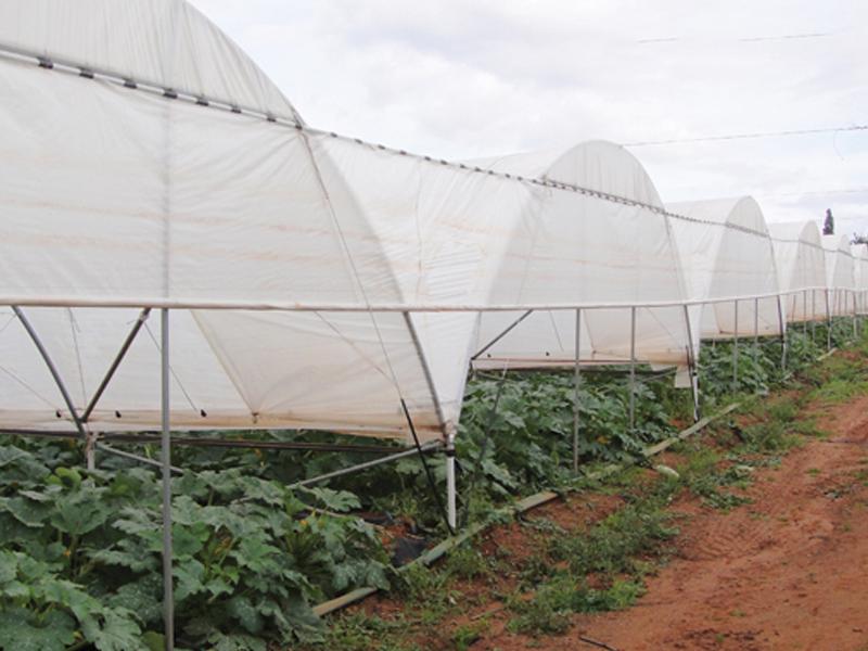 màng phủ nông nghiệp Solarig tunnels