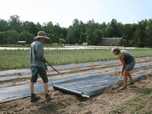 Bạc phủ nông nghiệp