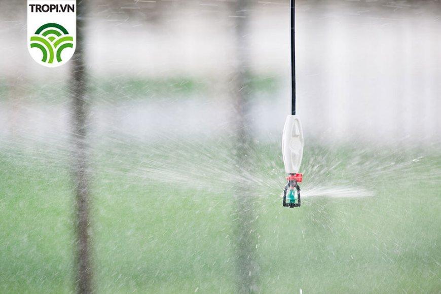 Đầu tưới phun mưa trong nhà kính Rondo inverted